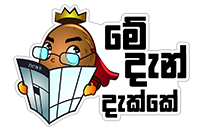 කිං Coconut sticker 10